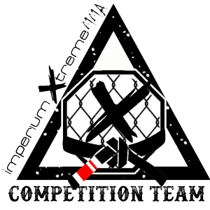 logo triángulo3